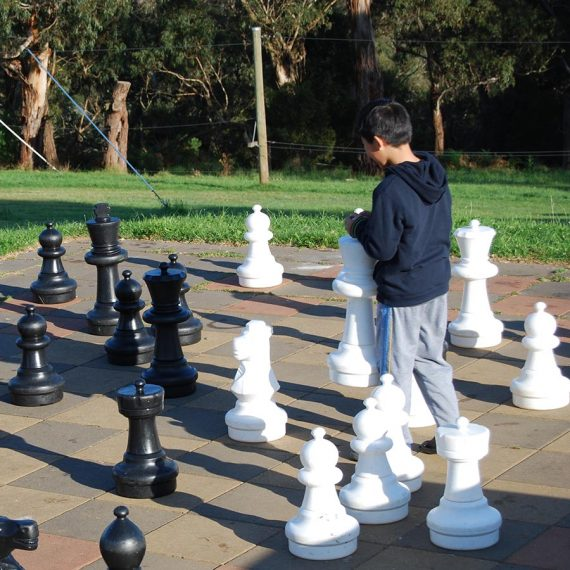 Chess-1-2014