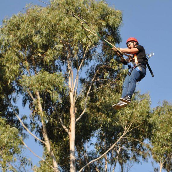giant-swing1